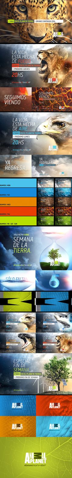 Diego Troiano on Behance 5 Elements, Motion Graphics, Discovery, Planets, Behance, Branding, Animation, Earth, Concept