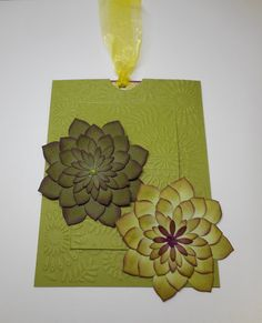 Stampin Up Oh Succulents, green, pop-up slider card, embossed, MerryMade Cards & Crafts, Happy Birthday to a very dear Friend