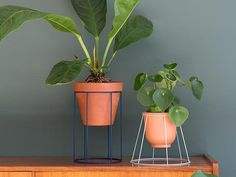 DIY leren plantenhanger   Blog My Attic   Do It Yourself   vtwonen