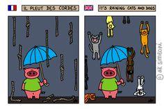 expressions français / anglais - il pleut des cordes / it's raining cats and dogs