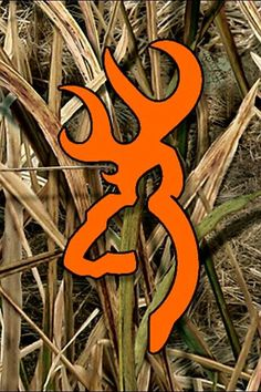 iPhone Army Wallpapers HD from Uploaded by user Realtree Camo Wallpaper, Hunting Wallpaper, Deer Wallpaper, Army Wallpaper, Cute Wallpaper Backgrounds, Girl Wallpaper, Cute Wallpapers, Camouflage Wallpaper, Baseball Wallpaper