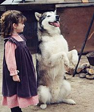 Wolf and Katy from Dr. Quinn Medicine Woman :)