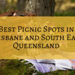 Best Picnic Spots in Brisbane and South East Queensland Picnic Spot, Family Picnic, Picnic Area, Brisbane River, Brisbane Cbd, Travel Info, Travel Guides, Shady Tree
