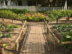 Garden at the King's Arms Tavern ColonialWilliamsburg  Side entry fence