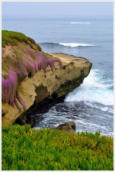 La Jolla, Southern California - maybe? Places Around The World, Oh The Places You'll Go, Cool Places To Visit, Places To Travel, California Real Estate, California Dreamin', Rancho Cucamonga California, West Coast California, San Diego Travel