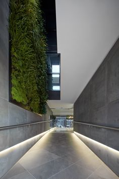 A grand entryway design by C.Kairouz Architects full of amazing design ideas. This lobby space includes LED strip lighting, bluestone tiles and a giant green wall. Swipe for more or click link to project>> #lobbyideas #lobbydesign #apartments #buildingdesign #modern #architecture #greenwall #sustainable #apartmentlobbyidea #entrance #entrancehall #commercialarchitecture