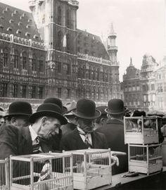 Marché aux oiseaux (Grand-Place) 1941 - vogelmarkt op de Grote Markt 1941 - bird market 1941 © Spaarnestad Photo