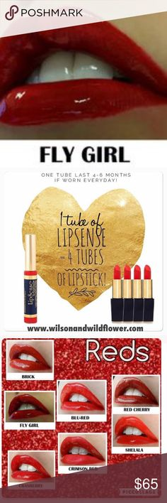 Fly Girl LipSense Kit Fly Girl LipSense Kit. Includes one tube of color, one tube of Glossy Gloss and one tube of Oops Remover. Also available at www.wilsonwild.com with free shipping. Makeup Lipstick