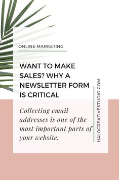 Collecting email addresses on your Squarespace website can be one of the best things you can do to increase sales. Here's how...