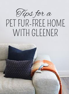 You know it's time to defluff when your upholstery is starting to look like one of your fur babies. 🐶🐱🐰Visit our new post for some tips and tricks to keep the fluff and fur in check. Clean Up, Fur Babies, Lab, Upholstery, Laundry, Posts, Throw Pillows, Check, Tips