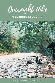 Wie wir den Overnight Hike im Gunung Leuser Nationalpark auf Sumatra erlebt haben. Lese hier, was dich erwarten wird! Rafting, Outdoor Reisen, Orang Utan, Hiking, Image, Box, Haunted Forest, Vacation Package Deals, Indonesia