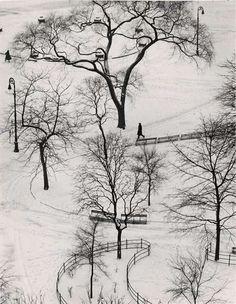 Andre Kertesz. Snow walk