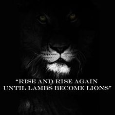 rise and rise again - Google Search