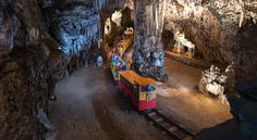 Postojna Cave by Train Overseas Travel, Adriatic Sea, Eastern Europe, Natural Wonders, The Great Outdoors, Fun Activities, Places To See, Stuff To Do, Tours