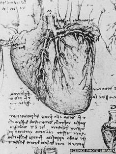 What Leonardo taught us about the heart - BBC News