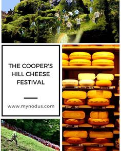 """""""In the following article you will get to know one of the most """"craziest parties in the world"""", that is celebrated in the middle of the English countryside, on a hill very close to the town of Brockworth, which is located in the county of Gloucestershire (England). The last Monday of May takes place the internationally famous Rolling Cheese Race on Cooper Hill. ☀ #Mynodusallyouneedinonesite #MyNodus.com #Mynodusblog #blog #blogger #article #curiosity #coopercheese #coopershill #cheese…"""
