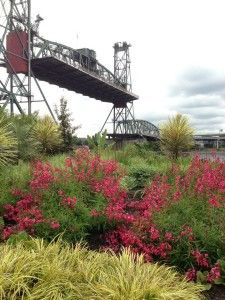 Hawthorne Bridge in Portland, OR. Raised bridge. Image accompanies April 2015 Portland Real Estate Statistics blog post: http://www.dannipdx.com/april-2015-stats/