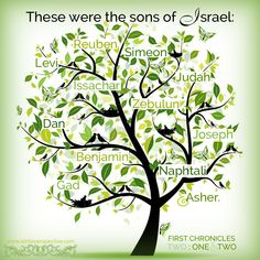The 12 tribes of Israel gen Jacobs blessings over his sons. Gen is Moses' blessings over Israel who broke the curses over Levi an SIMEON Exodus 12, Book Of Genesis, Understanding The Bible, Bible Resources, 12 Tribes Of Israel, 1 Chronicles, Fathers Say, Scripture Pictures, Strong Faith
