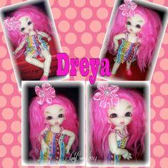 Dreya-Darjeeling pukipuki