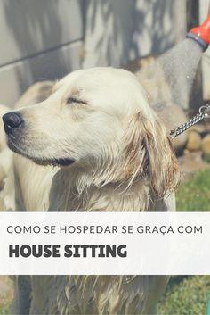 Que tal se hospedar de graça enquanto viaja e conhece novos lugares? Confira aqui como funciona House Sitting e economize com acomodação em suas viagens!