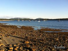 Lamoine Campground toward Mount Dessert Island #maine #acadia #coastlinbyannezimmerman