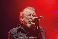 Robert Plant. Photo: John Kerr