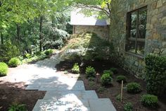 A Yard Fit For a Wedding - traditional - Landscape - Dc Metro - Revolutionary Gardens