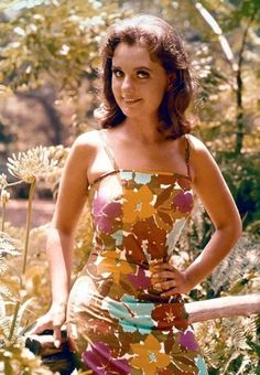 Gilligan's Island Dawn Wells As Mary Ann Summers From The Wb Photo Collection From Warner Bros. Mary Ann And Ginger, Hollywood Actresses, Actors & Actresses, Island Movies, Tina Louise, Show Photos, Vintage Hollywood, Classic Hollywood, Famous Women