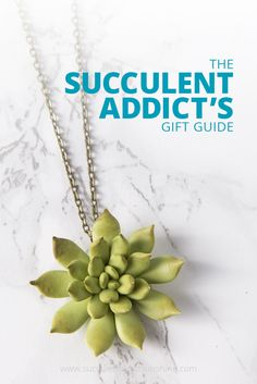 This post has so many great succulent gift ideas!