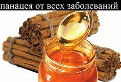 Ваш личный врач.: Мед и корица - панацея от всех заболеваний