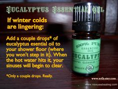 Eucalyptus in the shower will not only help open your sinuses, it'll help wake you up.