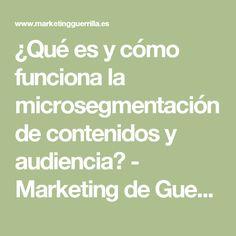 ¿Qué es y cómo funciona la microsegmentación de contenidos y audiencia? - Marketing de Guerrilla en la Web 2.0