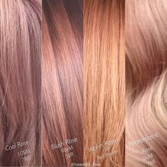 "Rose Gold on Fleek in case you missed the original post, here are my rose golds with formulas. Keep in mind, the first tone is the base tone, second is just to ""blush"" out your formula. I typically do 1oz to about 1/2 INCH of the second shade #kenracolor #rose gold #rosegoldhair #blushhair #pinkhair #slay @kenraprofessional #behindthechair #modernsalon #americansalon #hairgoals #metallicobsession #mermaidhair"