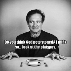 R.I.P. Robin Williams You will be Missed. Perfect #COMEDIAN for #domainNAME http://MarijuanaComedy.com Positive Quotes, Motivational Quotes, Inspirational Quotes, Hope Love, Sarcasm Humor, Positivity, Quotes About Strength, Cannabis, Weed