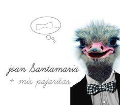 Bow tie for Joan Santamaría Perruquer.