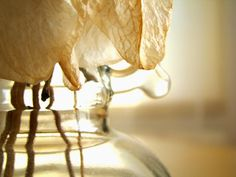 szuflada z rysunkami: Suche roślinki Table Lamp, Home Decor, Searching, Table Lamps, Decoration Home, Room Decor, Home Interior Design, Lamp Table, Home Decoration