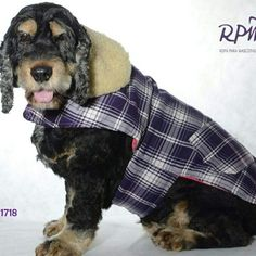 Ropa para mascotas rpm