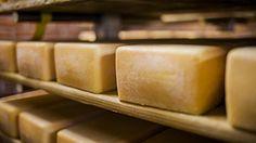 Maredsous is één van de zeldzame plaatsen waar kaas nog in de kelders van een Abdij wordt gerijpt. Deze kaas dankt zijn smeuïgheid en zijn romige smaak aan een uniek en traditioneel rijpingsproces dat al vele jaren wordt toegepast. Daarbij spelen de typische flora in de kelders van Maredsous een essentiële …