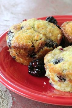 Blackberry Muffins - Creative Homemaking Easy recipe for blackberry muffins. The BEST homemade muffins from fresh or frozen blackberries. Blackberry Muffins Easy, Blackberry Recipes Easy, Best Blackberry, Black Berry Recipes, Blackberry Recipes Breakfast, Blackberry Benefits, Blackberry Bread, Blackberry Dumplings, Blackberry Margarita