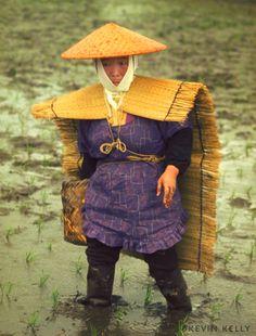 "Japanese traditional ""rain clothes"" (mino / mino e kasa) (useful for rain and snow weather"