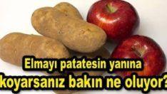 Patatesin yanına elma koyduğunuzda bakın ne oluyor? Health Heal, Sweet Potato, Sausage, Potatoes, Meat, Vegetables, Youtube, Food, Kitchen
