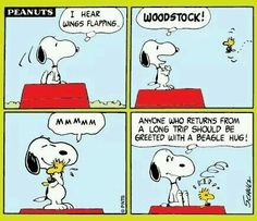 It takes all kinds peanuts comic strip