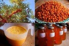 Rakytníkový sirup Sweet Recipes, Healthy Recipes, Dieta Detox, Juicing For Health, Food Club, Beverages, Drinks, Natural Medicine, Natural Remedies