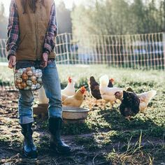 Lady farmer in jeans and flannel, gorgeous morning light and chickens in all colours! Lady farmer in Country Farm, Country Life, Country Girls, Country Living, Country Roads, Esprit Country, Vie Simple, Photo Food, Farm Photography