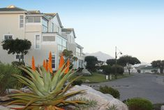 The Potting Shed Self Catering Hermanus Located in Hermanus within a 24 hour security complex, The Potting Shed Self Catering offers an outdoor pool and a walk way to a rocky beach. This self-catering accommodation features free WiFi. The property is