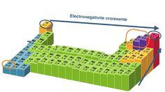 """""""echelle d'electronegativité"""""""