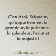 Ancien Testament: 1er Livre des Chroniques