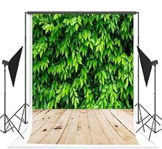 Green 6x8 FT Photo Backdrops,Forest Moss Leaves Nature Themed Isolated Jungle Image Photo Print Background for Child Baby Shower Photo Vinyl Studio Prop Photobooth Photoshoot