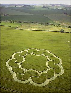 crop circle   http://sonha.com/cua-tu-dong-27-b.aspx