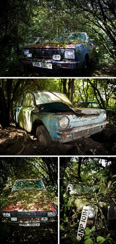 Consumed by foliage, these abandoned cars and overgrown vintage vehicles add an ironic twist to the concept of going green.